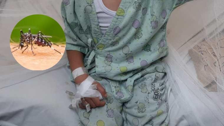 IHSS: Niña de 4 años es la catorceava víctima mortal a causa del dengue