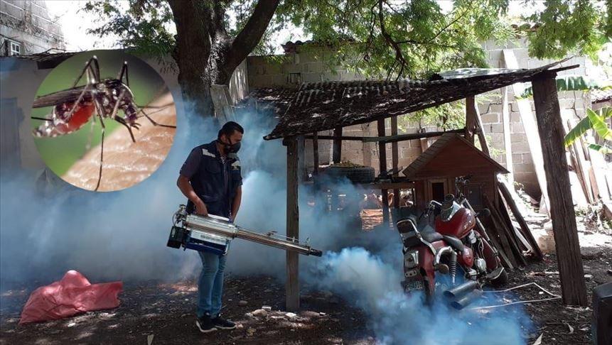 Salud: Cifra de muertes por dengue hemorrágico asciende a 177 casos
