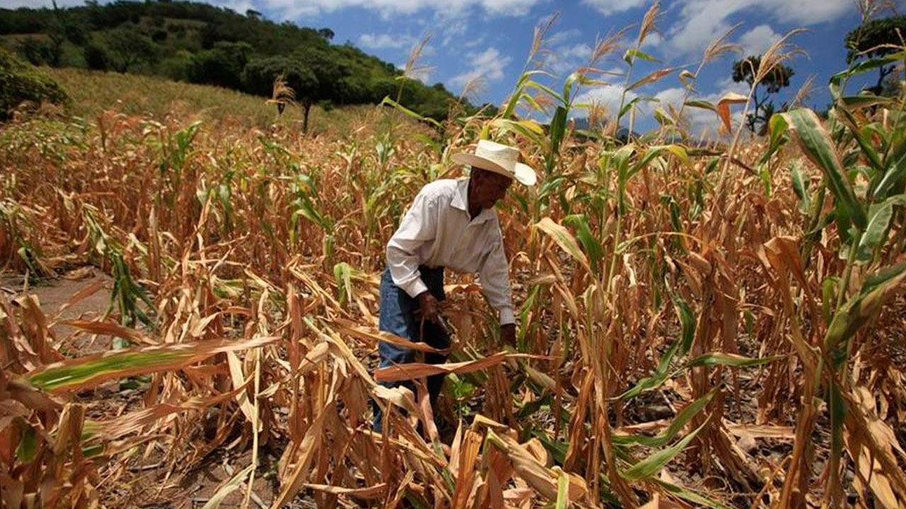 La SAG prepara estrategia ante anuncio de posible sequía