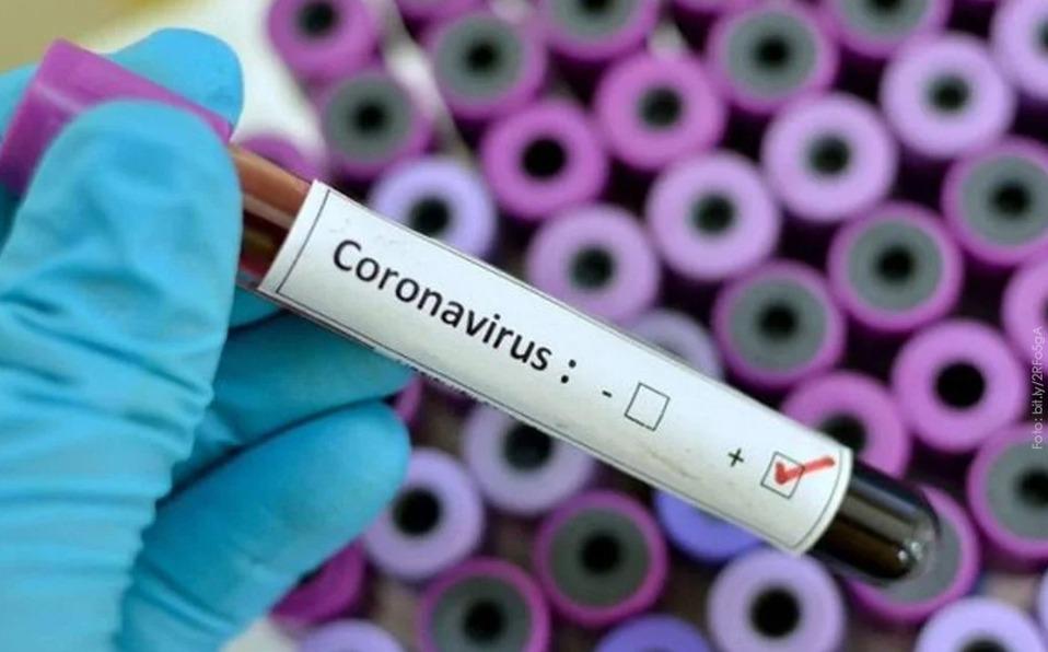 Nuevos informes muestran que la inmunidad de Covid-19 puede durar meses