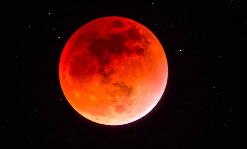 «Luna del Lobo»: Primer eclipse lunar de 2020 será visible esta noche