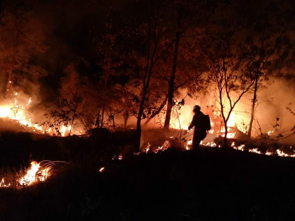 Congreso de Paraguay declara emergencia nacional por incendios forestales