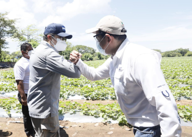 Presidente Hernández llama a ser solidarios con todos los sectores en medio de pandemia