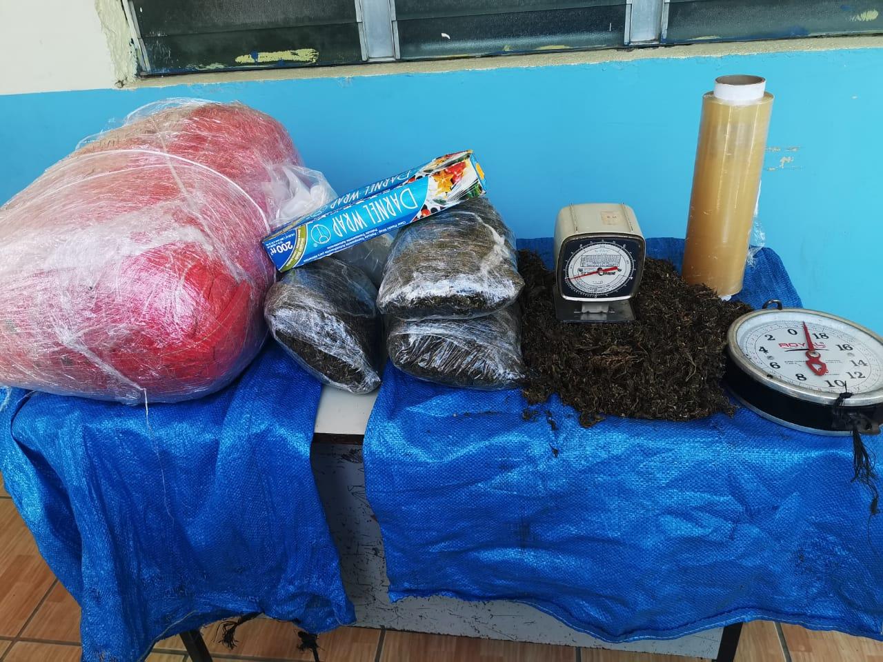 Decomisan unas 40 libras de supuesta marihuana en Colón