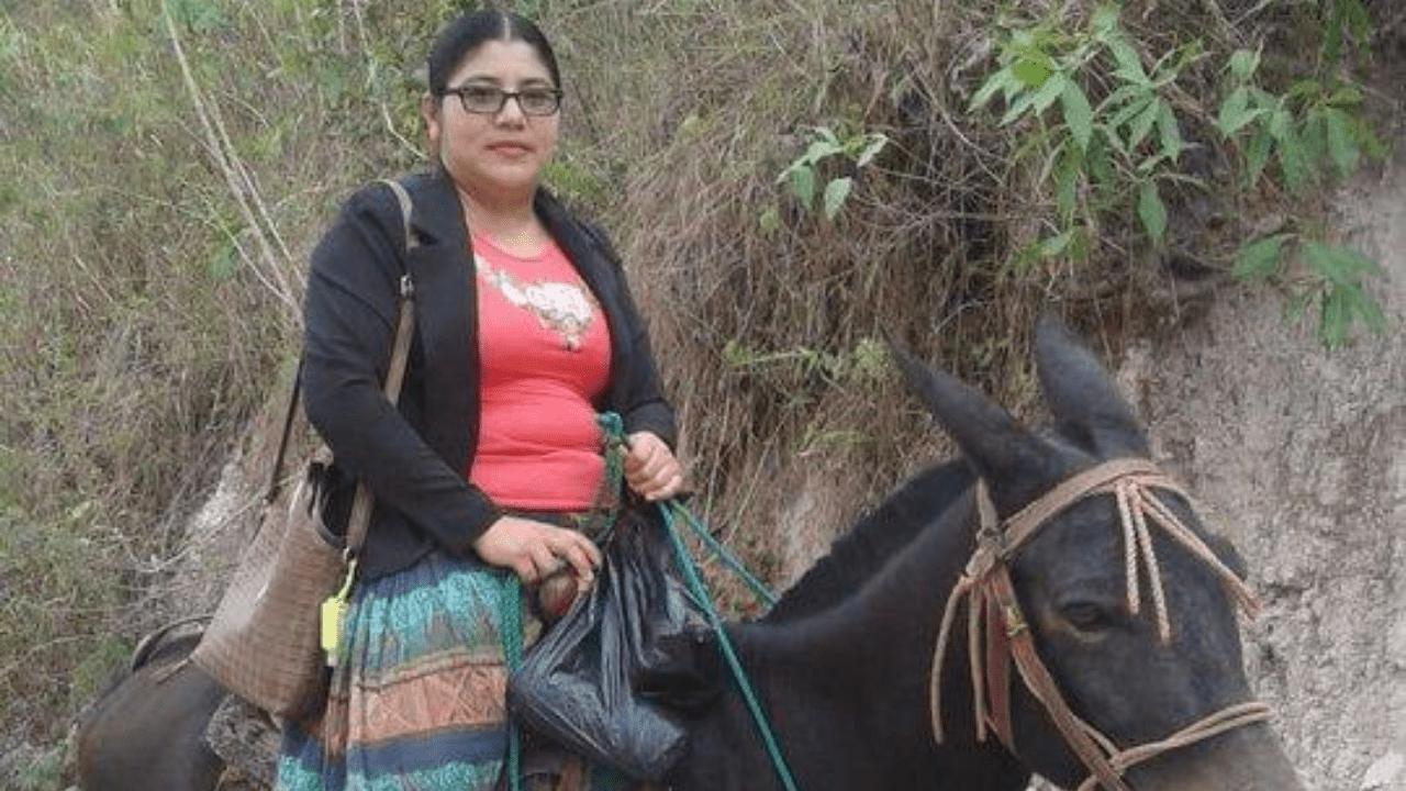 ¡Admirable! Maestra recorre kilómetros en mula para asegurar la educación ininterrumpida