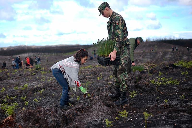 FFAA reafirma su compromiso de cuidar y proteger los bosques del país