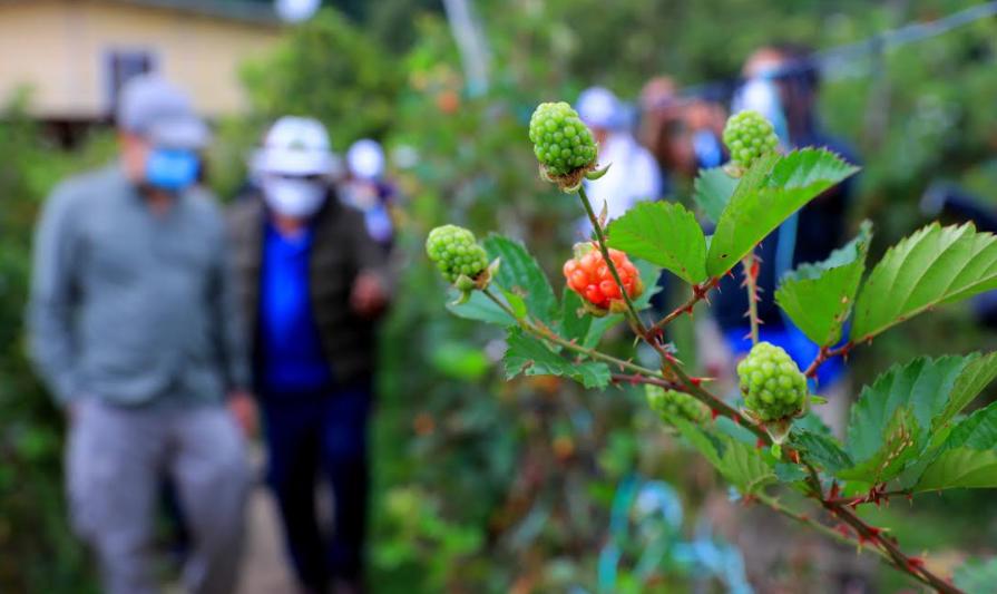 Lanzan campaña turística para promover el Feriado Morazánico denominada «Porque lo Mereces»