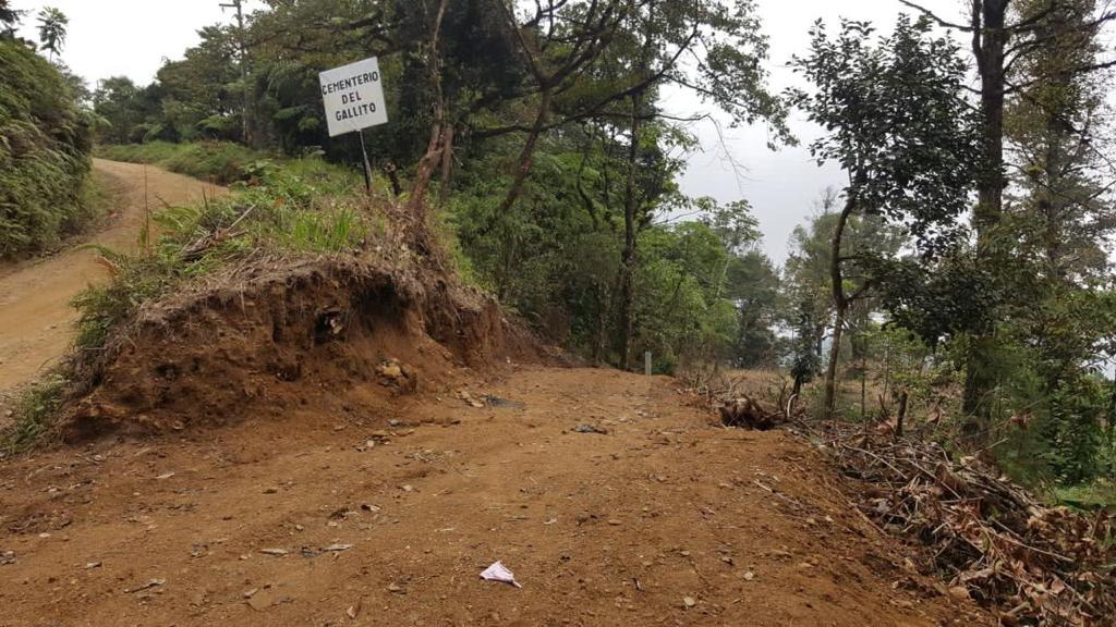 Fiscalía del Ambiente investiga descombro en la reserva de El Merendón donde pretenden construir un cementerio
