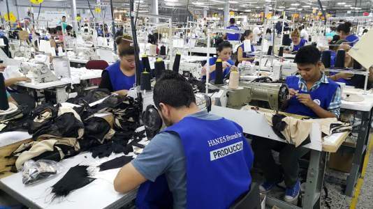 Viceministro de Trabajo : «Muchos hondureños que fueron suspendidos de sus empleos ya retornaron a trabajar»