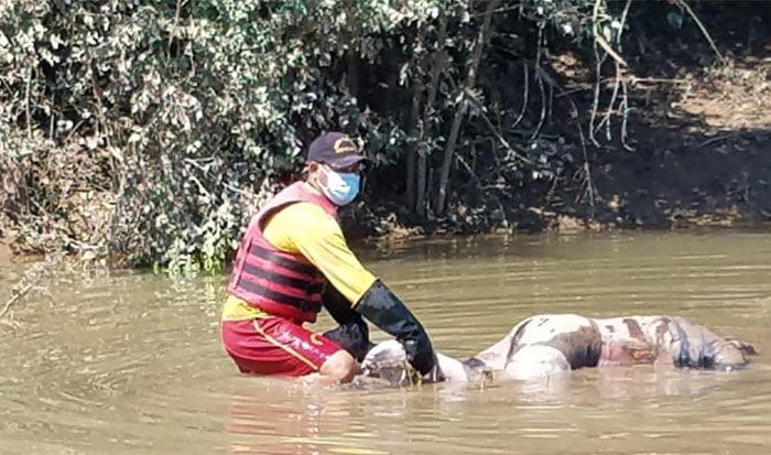 Bomberos encuentran cadáver de hombre que murió en inundaciones en la zona norte