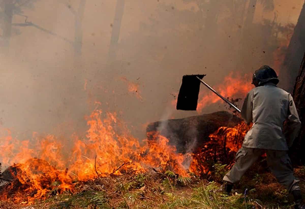Incendios y desforestación inciden en inundaciones asegura el ICF