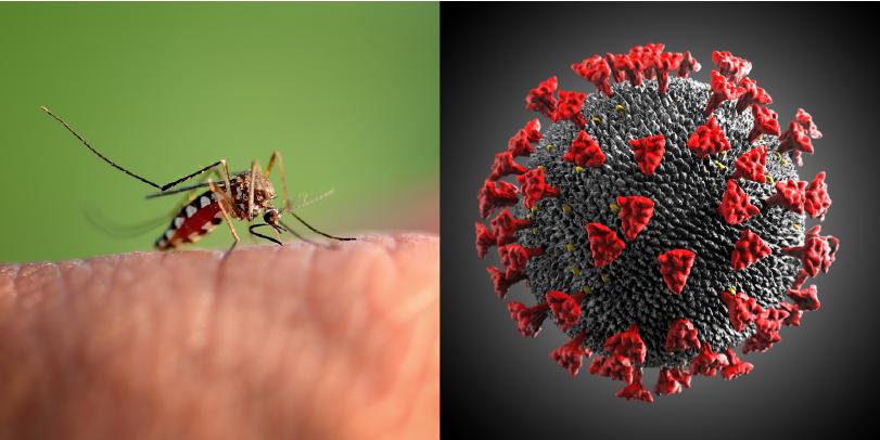 Salud debe estar alerta para prevenir contagios de COVID-19, dengue y otras enfermedades