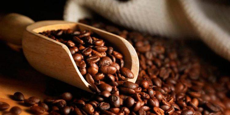 Presidente de Uniocoop: «$1,000 millones en divisas generará exportación de café»
