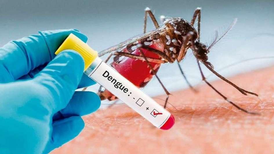 En un 90% bajan los casos de dengue en el Hospital Escuela
