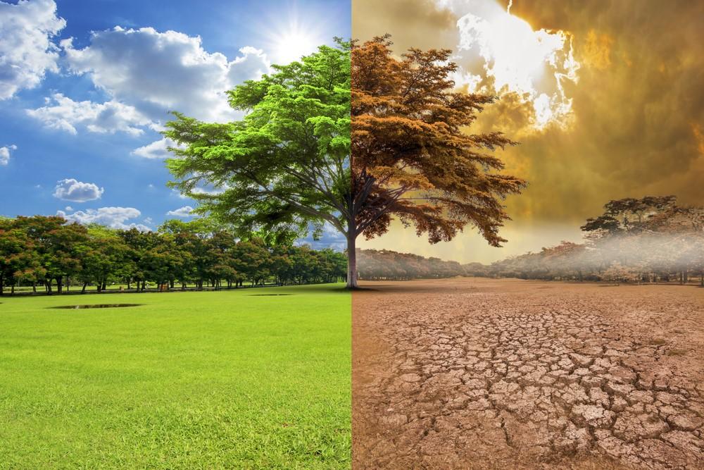 Razones por las que 2021 puede ser crucial en el cambio climático