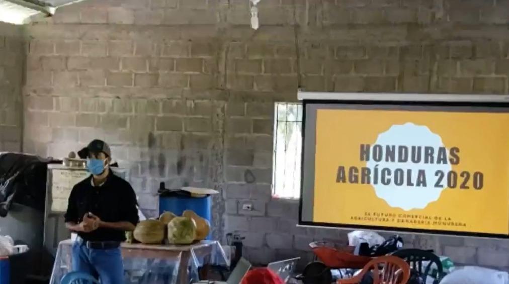 Ingenieros crean  plataforma digital para capacitar a pequeños emprendedores en  producción agrícola