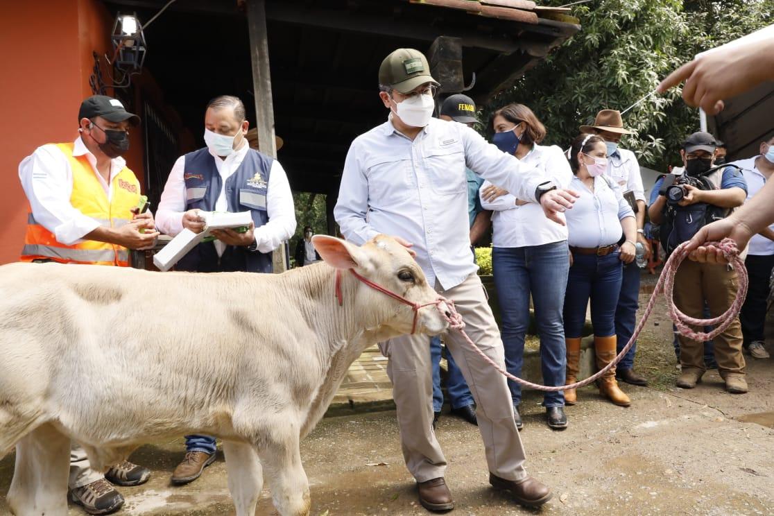 Gobierno lanza plan sanitario de salud animal en La Ceiba