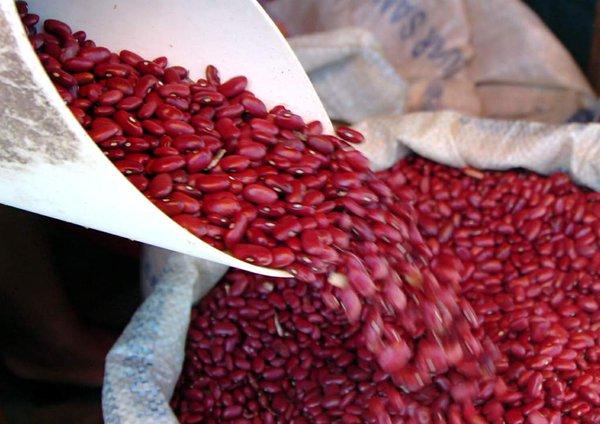 Gerente del IHMA: «Garantizamos el abastecimiento de granos para los próximos meses»