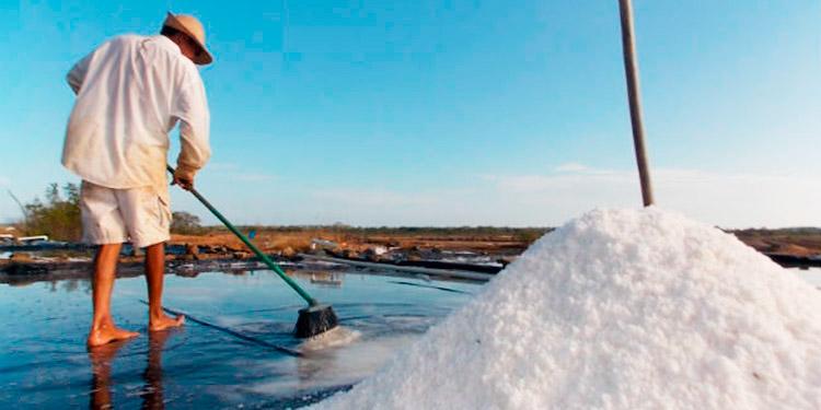 Anaprosal: 1.4 millones de quintales de sal producirán este año