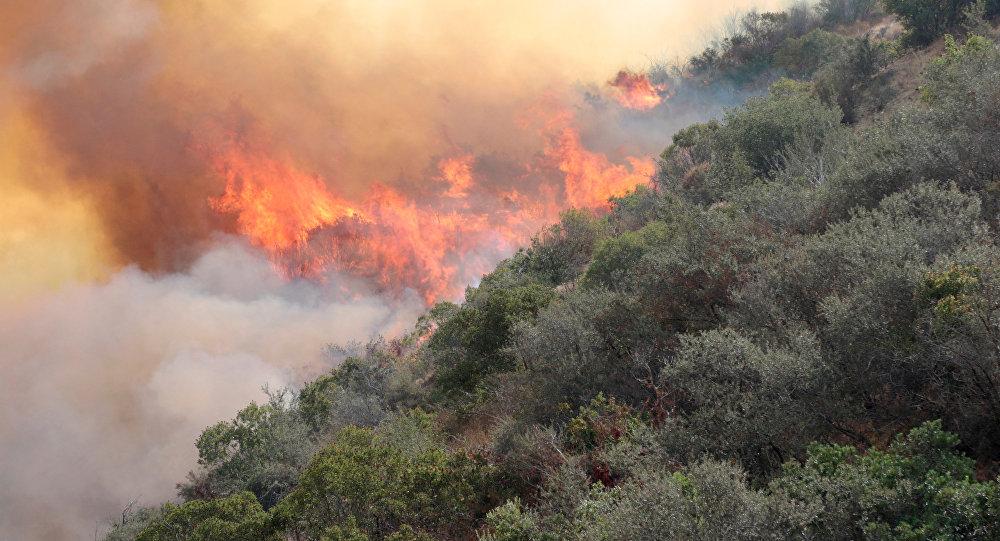 En lo que va del año ICF ha sofocado 19 incendios forestales