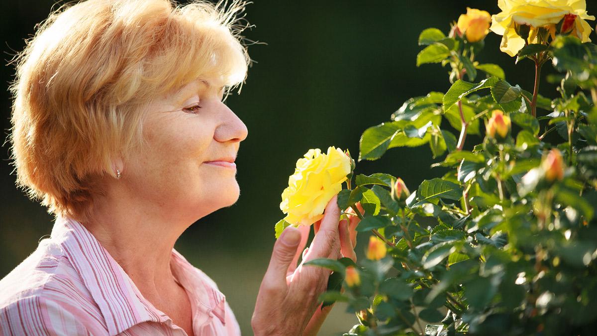 Las flores tienen un impacto positivo para la salud y el bienestar