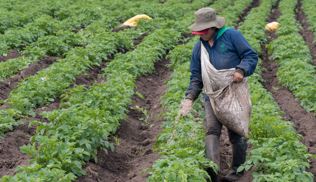 Tasa del 5% nunca se había visto en la historia del agro asegura la presidenta de la Fenagh