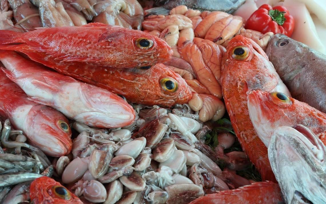 Fiscalía ejecuta operativos para verificar precios de mariscos