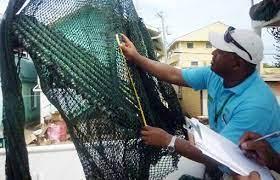 Para proteger al consumidor:  SAG capacita inspectores sobre productos pesqueros