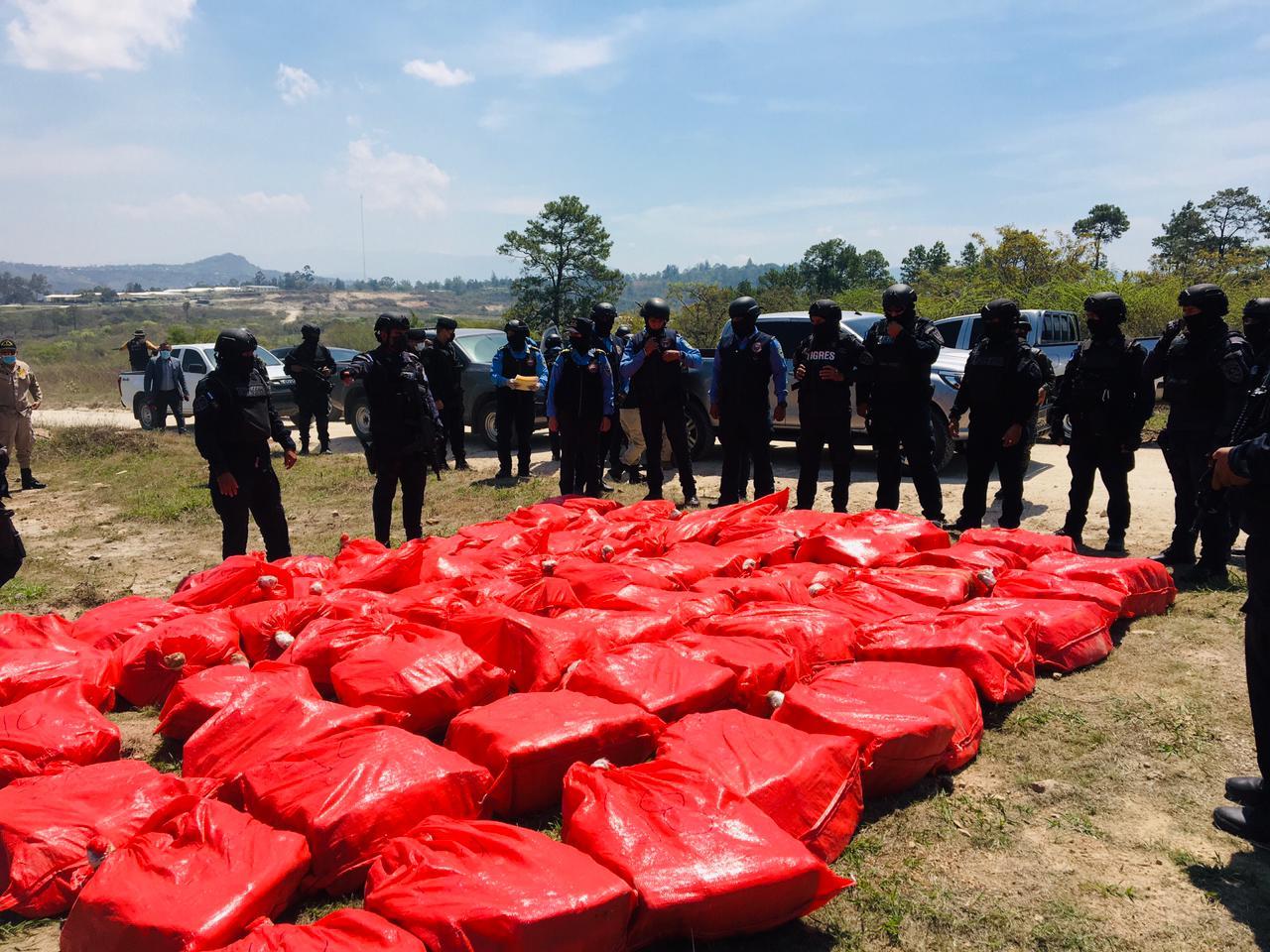 Incineradas 2.3 toneladas de droga decomisada por la DNPA en distintas zonas