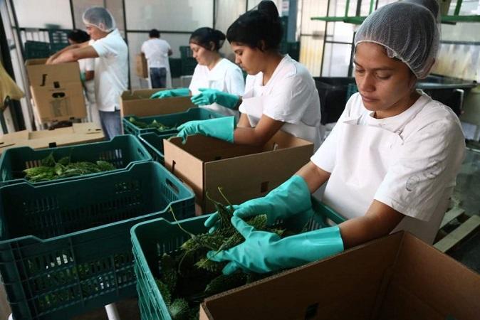 Olvin Villalobos: Esta semana esperamos llegar a una solución en el tema del salario mínimo