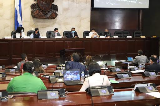 Vicepresidente del Legislativo: CN debe celebrar sesiones presenciales